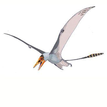 Flyvende væsener
