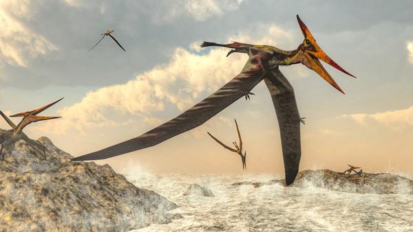 Flyvende væsener – et undervisningsmateriale til naturteknologi indskoling